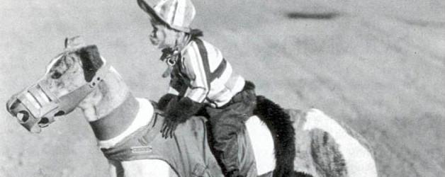 greyhound-racer-adj